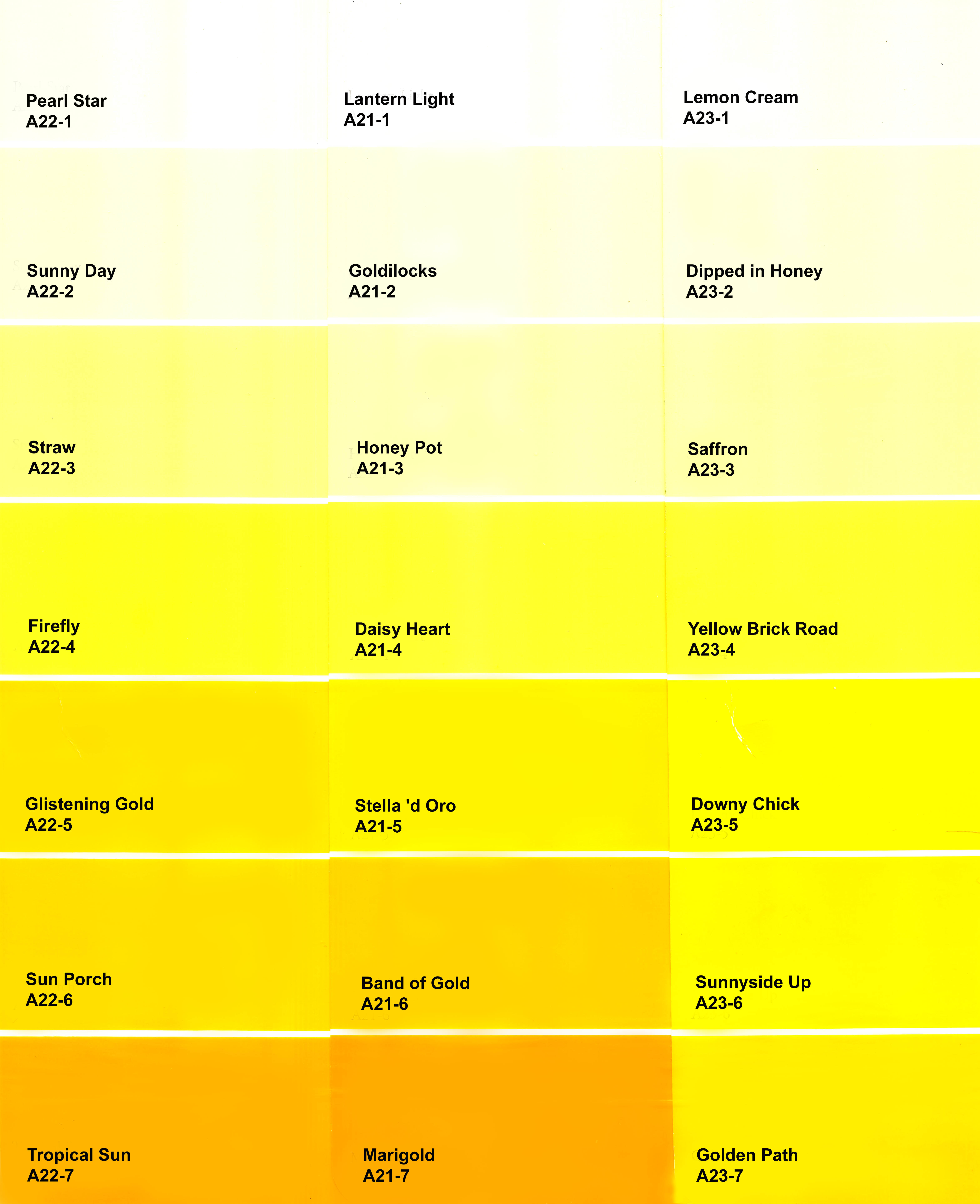 Educational color chart for men