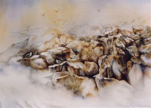 Cape Elizabeth  14 x 17 watercolor on paper © Debra Argosy
