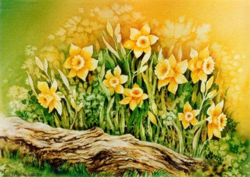 Daffodils   7 x 9  watercolor on paper   © Debra Argosy