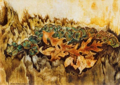 Oak Stump Study  6 x 8 watercolor on paper © Debra Argosy