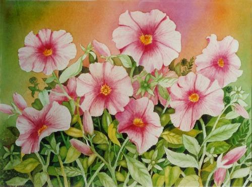 Petunias 9 x 13 watercolor on paper  © Debra Argosy