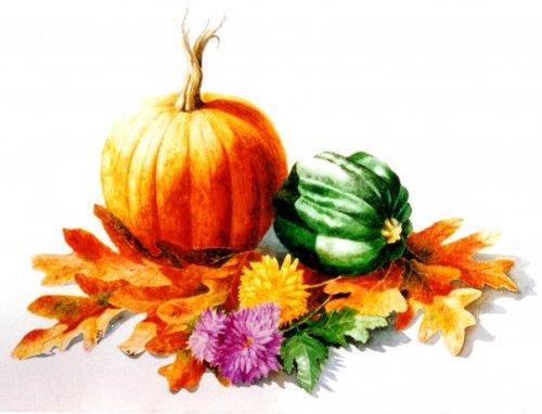 Still Life with Pumpkin  10 x 13 watercolor on paper © Debra Argosy